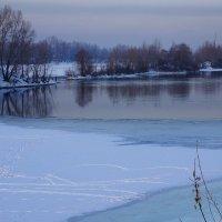 Зимние прогулки :: Екатерина Торганская