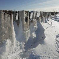 Северодвинск. Белое море сегодня (2) :: Владимир Шибинский