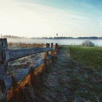 Утро в деревне :: Виталий