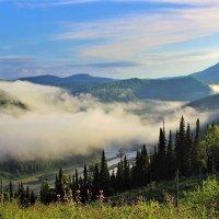 Зависший туман :: Сергей Чиняев