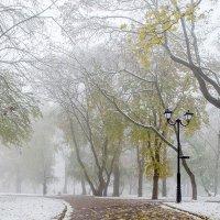 Про снежок и туман :: Сергей Тарабара
