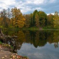 Осень 4 :: Андрей Бондаренко