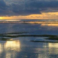 Утро на Бали :: Slava Hamamoto