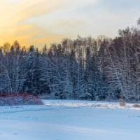 Зимний закат :: Владимир Лазарев
