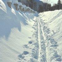 Тротуар-лыжня :: Эльвира Ермакова