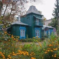 Старый деревянный дом :: Сергей Тарабара