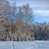 Зимние пейзажи :: Владимир Лазарев