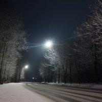 Зимняя ночь :: Алёнка Шапран