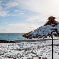 Абхазия зимой :: Алексей Петренко