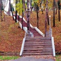 Осень :: Падонагъ MAX