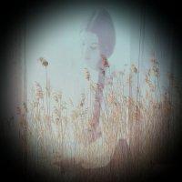 Лёгкая грусть :: Виктория Нефедова