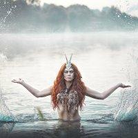 Amazonka :: Anna Schmidt