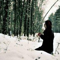В зимнем лесу :: Марта Маркова
