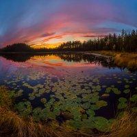 Осенние сумерки на озере. :: Фёдор. Лашков