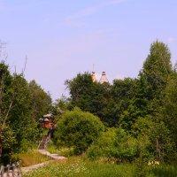 кривые дорожки :: Светлана Ларионова