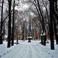 Зима в Румянцевском Саду... :: Sergey Gordoff
