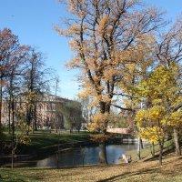 Царицыно :: Владимир Холодницкий