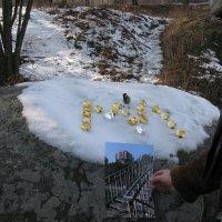Презентация МЛ (Музея любви) на снегу :: Алекс Аро Аро