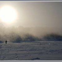Солнце сквозь туман :: gregory `