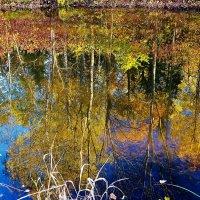 Любуется осень своим отражением... :: Sergey Gordoff
