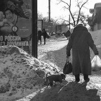Дама с собачкой :: Татьяна Копосова