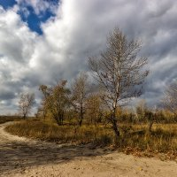 Уж небо осенью дышало... :: Павел Петрович Тодоров