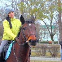 Мы с конём :: Юрий Гайворонский