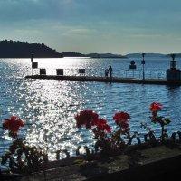Dalarö Швеция :: Swetlana V
