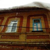 Снежная опасность. :: шубнякова
