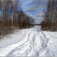 Февраль- кривые дороги :: Вячеслав Минаев
