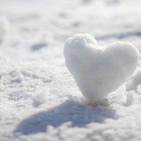 снежок :: Женечка Зяленая