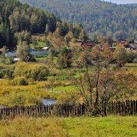 Бархатный сезон в деревне :: Екатерина Торганская