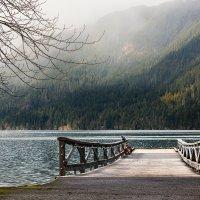 На озере :: Alena Nuke