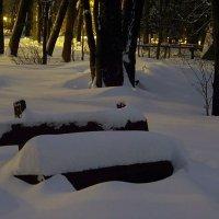 огни парка :: Miko Baltiyskiy
