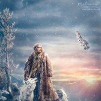 Winter is coming... :: Tatyana CHERNOVA