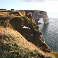 Атлантическое побережье в Нормандии :: Фотограф в Париже, Франции Наталья Ильина