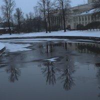 Завтра весна :: galina bronnikova