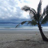 Остров Ко Куд. Перед бурей. :: Лариса (Phinikia) Двойникова