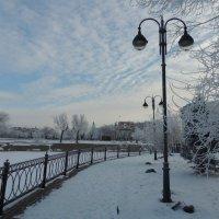 снежный февраль :: Евгения Чередниченко