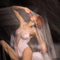иногда меня тоже фотографируют :: Инна Пантелеева