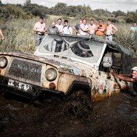 В борьбе с грязью :: Ксения Курилина