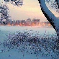 Утро :: Miko Baltiyskiy