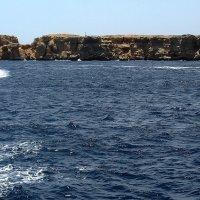 Море! Скучаю, море.... (Рас-Мохаммед - 2009 год, камера Canon PowerShot A710 IS ) :: Elena Izotova