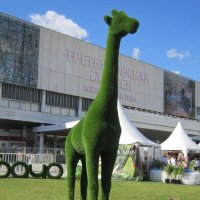 Вот жираф зелёный :: Дмитрий Никитин