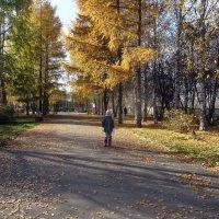 Еще осень :: Елизавета Успенская
