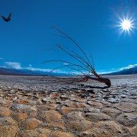 Долина Смерти… :: Roman Mordashev