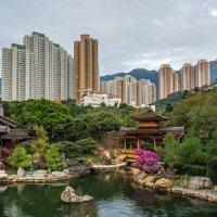 """Среди небоскребов (из серии """"Парки Гонконга"""") :: Виктор Льготин"""