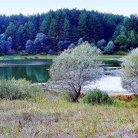 Пейзаж с озером :: Николай Масляев