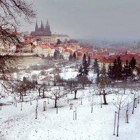 Прага с Петршина холма. :: Алла ************