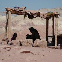 Затерянные в пустыне :: Николай Танаев